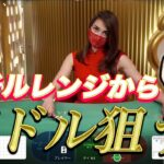 資金50万円入金してオンラインカジノのバカラで1万ドルを目指す!|レオベガス