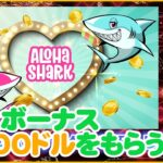 【オンラインカジノ】アロハシャーク(Aloha shark)の特徴と最大1500ドルボーナスもらえるお得な登録方法について【2021年最新版】
