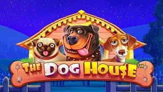 【オンラインカジノ】DOG HOUSE【Vera&John】