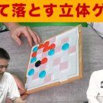 【ボードゲーム】傾けて落とす!戦略的立体ゲーム【ティプシー】