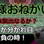 #カジノ配信 【借金返済チャレンジ!】オンラインカジノ編 神様はいるのか?