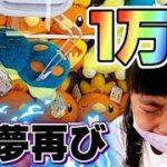 【クレーンゲーム】1万円企画失敗!? 号泣 ~よみがえる悪夢~