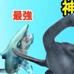 サメがおデブをぶっ飛ばすと海の恐竜に進化するゲーム【 Shark Attack 】