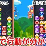 【実況】今週はいよいよ国体予選!最終追い込み  ぷよぷよeスポーツ Puyo Puyo Champions 166