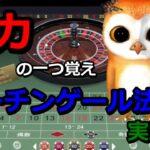 #カジノ配信 【借金返済チャレンジ!】オンラインカジノ編 マーチンゲール実践記