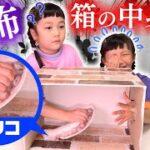 【ドキドキ】箱の中身はなんだろなゲームがヤバすぎて姉妹で発狂!【ぷにるんず】