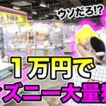 【1万円】やらかした。。ディズニーグッズ何個取れるか挑戦していたら・・・。【クレーンゲーム】