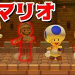 【ゲーム遊び】マリオメーカー2 みえないマリオ【アナケナ&カルちゃん】Super Mario maker 2