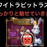 【ロイヤルパンダ】ホワイトラビットはワイの青春、連続購入③【オンラインカジノ】