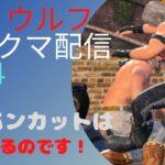 【VFes バーチャファイターeスポーツ】 ランクマ配信 ウルフ #34 クールに!