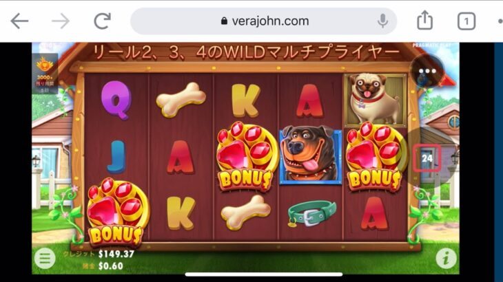 【オンラインカジノ】久しぶりの動画!dog house 最近全然だめだ🙅♂️