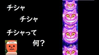 【ロイヤルパンダ】チシャ猫。そう、移り行くチシャ猫【オンラインカジノ】