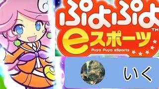 【ぷよぷよeスポーツ vsとろろ】 ぷよぷよフィーバー対戦  とろろさんと対戦