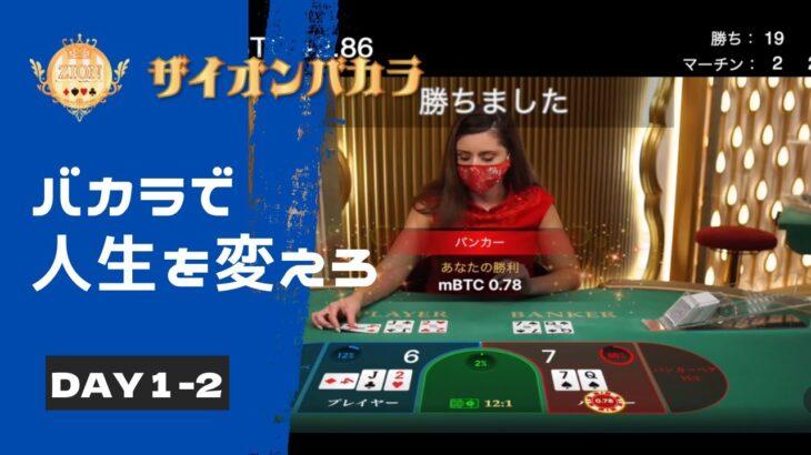 オンラインカジノ~バカラ~  ロジックエビデンス